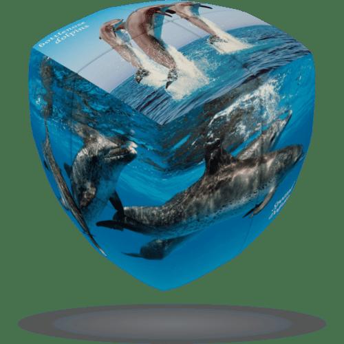 V-CUBE 2 Pillowed - Dolphin