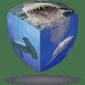 V-CUBE 2 Pillowed - Sharks
