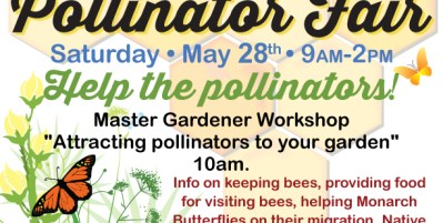 BEE Aware Pollinator Fair!