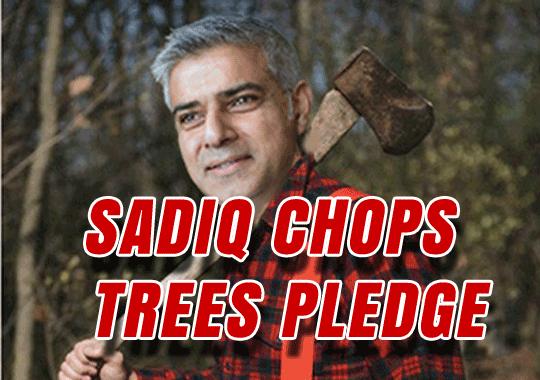 Sadiq Tree Policy Chop