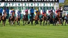 f56447ae3affdd52_640_horse-race