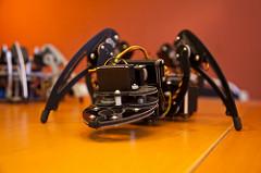 robot spider photo