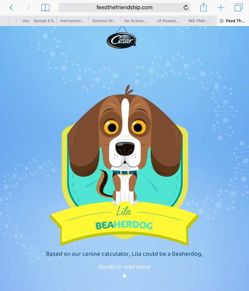 15 Great Reasons To Adopt a Dog #FeedTheFriendship #CG #sponsored