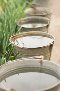 Four bucket with water