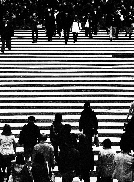 Shibuya (foto di Patrick Colgan, 2015)