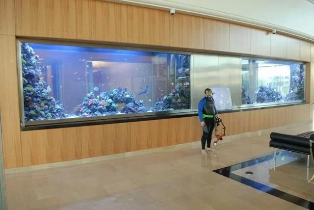 marvell aquarium 7000 gallons Marvell Aquarium