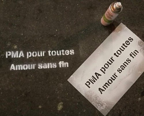 Campagne LESBIEFEM : PMApourToutes