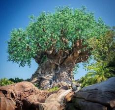 Disney World Snapchat Filters - Animal Kingdom Snapchat Filters