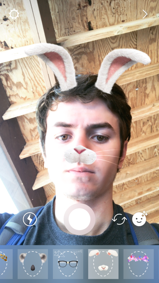 White Bunny Rabbit Instagram Face Filter