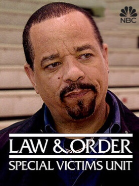 When Will Law & Order: SVU Season 19 Be Available on Netflix?