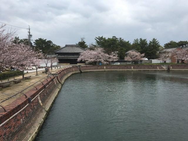 諸戸氏庭園2