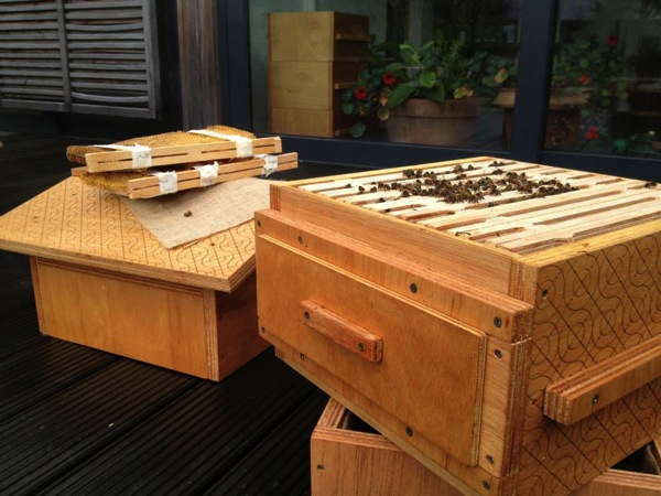 Open Source Beehives-3