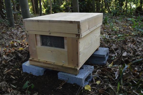 養蜂、巣箱をついに設置