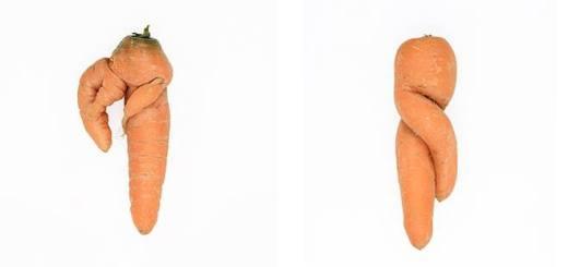 綺麗な野菜がおいしいとは限らない。欠陥のあるニンジン写真集『Defective Carrots』が伝えるもの
