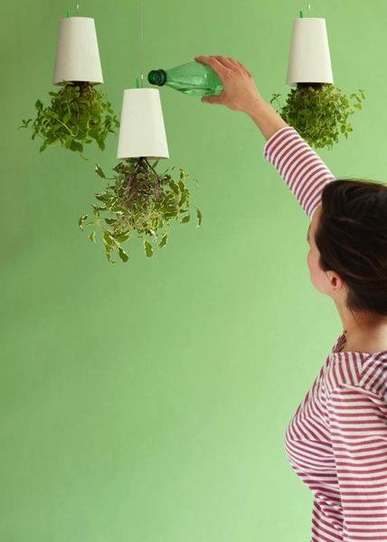 上下逆さま!天井から吊るす「スカイプランター」でキッチンの上に菜園空間を