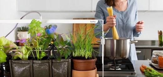 日当りが悪くてもおしゃれな菜園生活を。イタリアで生まれた室内菜園専用のLEDライト「bulbo」