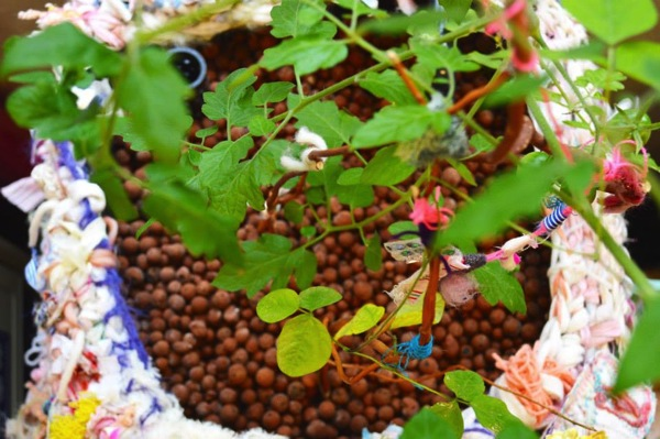 クラフト作家「KAIE」がアクアポニックス菜園をおしゃれにデザイン-10