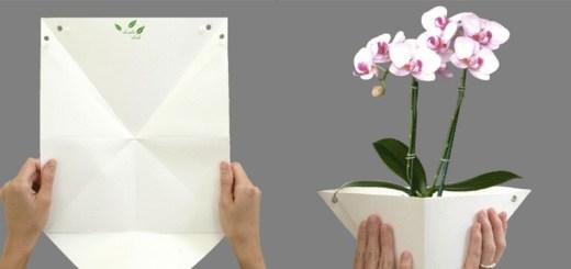 一枚の紙がプランターに。父親と5歳の娘がつくった封筒サイズの菜園