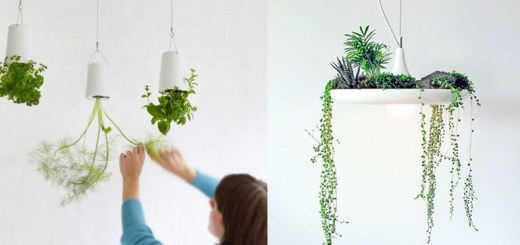 家庭菜園は庭とベランダだけじゃない。アイデアが広がる世界の菜園グッズ11選