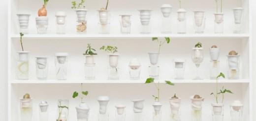 ゴミが命に。捨てられたグラスを再利用して作られたプランター