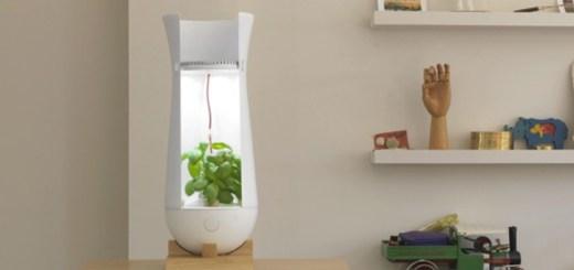 ライトの色で植物の健康を教えてくれる栽培システム「The Eva Lamp」
