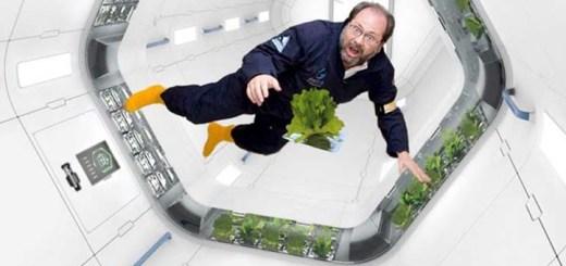 無重力で菜園生活。宇宙で育てる時代がやってくるとき