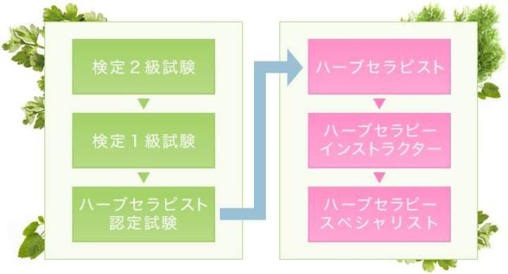 個人の楽しみからセラピストまで。日本で取得できるハーブ検定・資格28種類まとめ