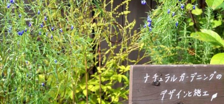 初めまして。テラス木蓮、「小庭カフェ」デザイナーの泉です
