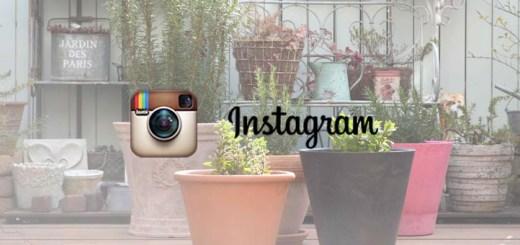 アロマガーデン公式Instagramアカウントを開設しました