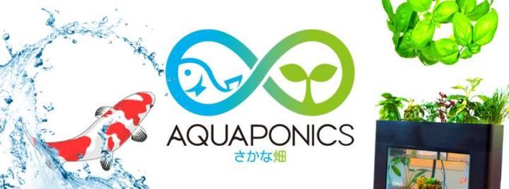 アクアポニックス公式コミュニティを開設しました