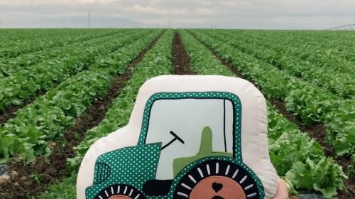 Oui Oui-viaje florette huerto florette-cojin tractor