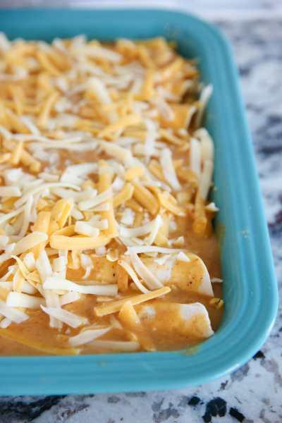 The Best Chicken Enchilada Recipe