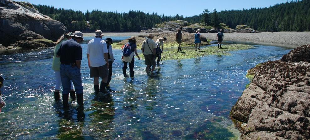 Friends of Cortes Island Summer Activities Program
