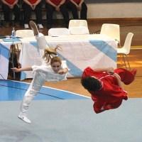 Artai domina el Campeonato gallego de Kungfu Moderno