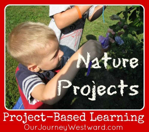 Project-Based Learning in Nature @CindyWest (Our Journey Westward)