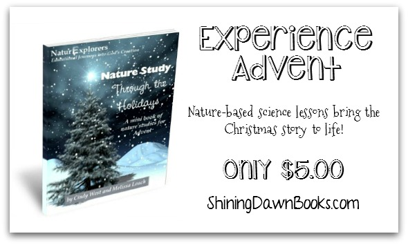 The Christmas story through nature-based science lessons. A fresh approach to Advent!