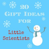 Do you have an elementary science lover? This is a great list of gift ideas for little scientists!