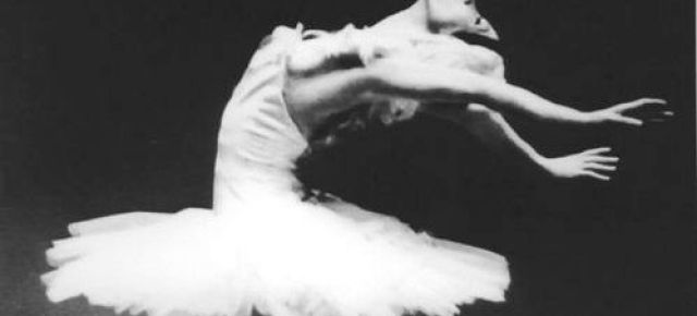 Diva Alert! Shall We Dance Friday Encore: Natalia Makarova- Dying Swan