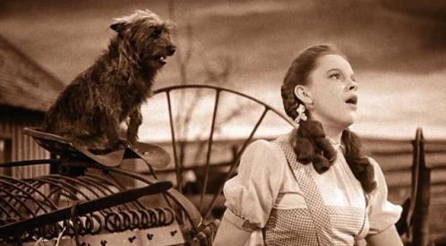 11/23/15 O&A NYC Hollywood Monday: Somewhere Over The Rainbow- The Wizard Of OZ