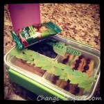 "A ""Green"" Lunchbox!"