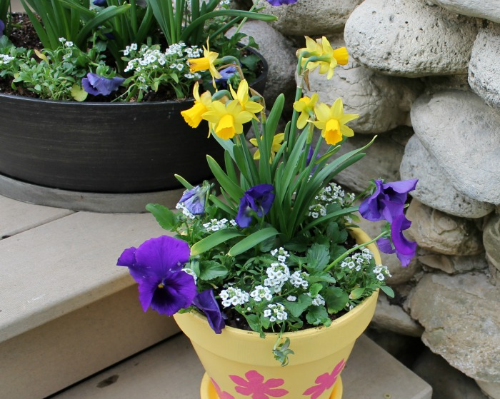 How to Plant Beautiful & Full Flower Pots & DIY Painted Flower Pot