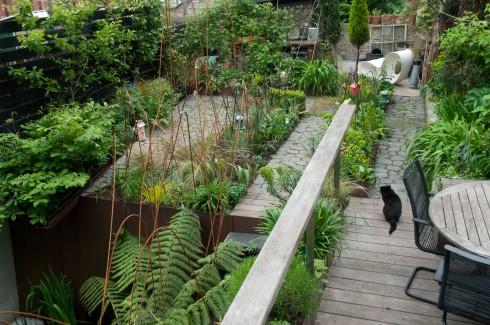 Deborah Nagan's garden May 2013
