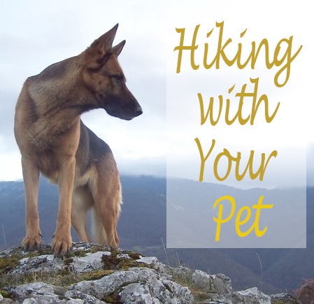 GENERAL TIPS 4: Hiking with Your Pet