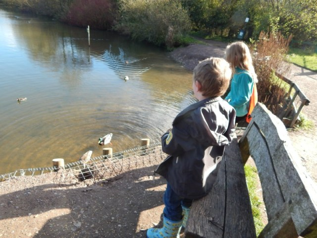Nature Discovery Centre at Thatcham