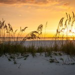 Endless Summer at Fort Myers Beach and Sanibel Island