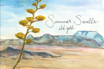 summer-swells
