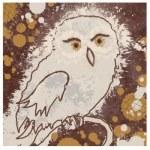 Owl-II-Premium-Giclee-Print-500 (Premium Giclee Print Owl II Owl Art)