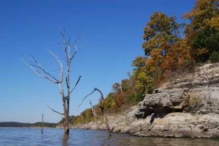 Bluffs and dead trees on Truman Lake, Missouri