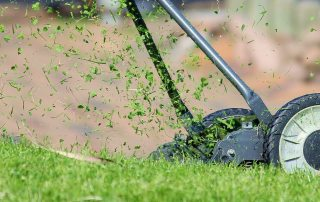 Who's Responsible for Duplex Lawn Maintenance?