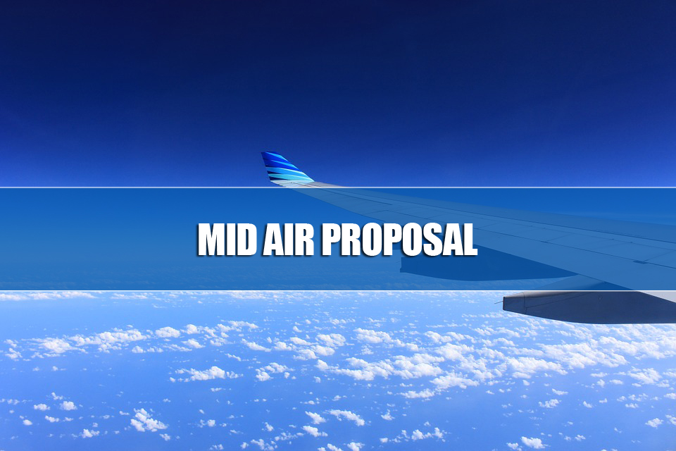 Mid Air Propose
